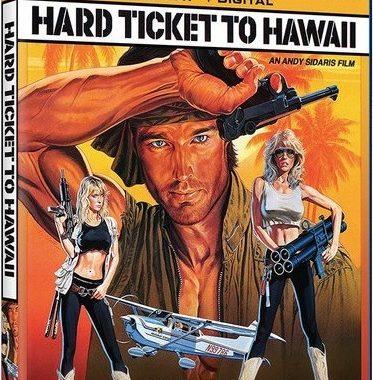 Заваруха на Гавайях / Hard Ticket to Hawaii (1987) BDRemux 1080p | A