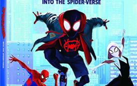 Человек-паук: Через вселенные / Spider-Man: Into the Spider-Verse (2018) HDRip от OlLanDGroup | Лицензия