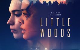 Лесок / Little Woods (2018) WEB-DLRip-AVC | HDRezka Studio