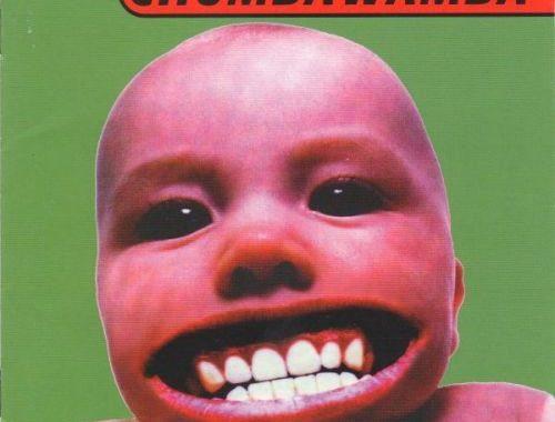 Chumbawamba - Tubthumper (1997) FLAC