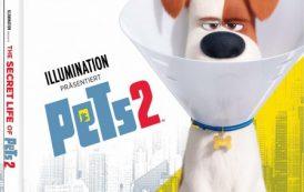 Тайная жизнь домашних животных 2 / The Secret Life of Pets 2 (2019) BDRip-AVC от OlLanDGroup | P