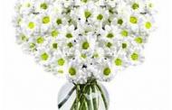 Праздничная доставка цветов в Киеве – в любое время подарим радость