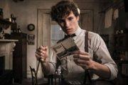 Эдди Редмэйн объявил о возобновлении съемок «Фантастических тварей»