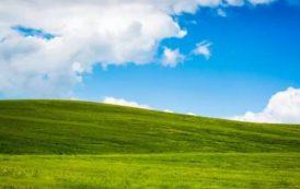 Исходный код Windows XP попал в открытый доступ